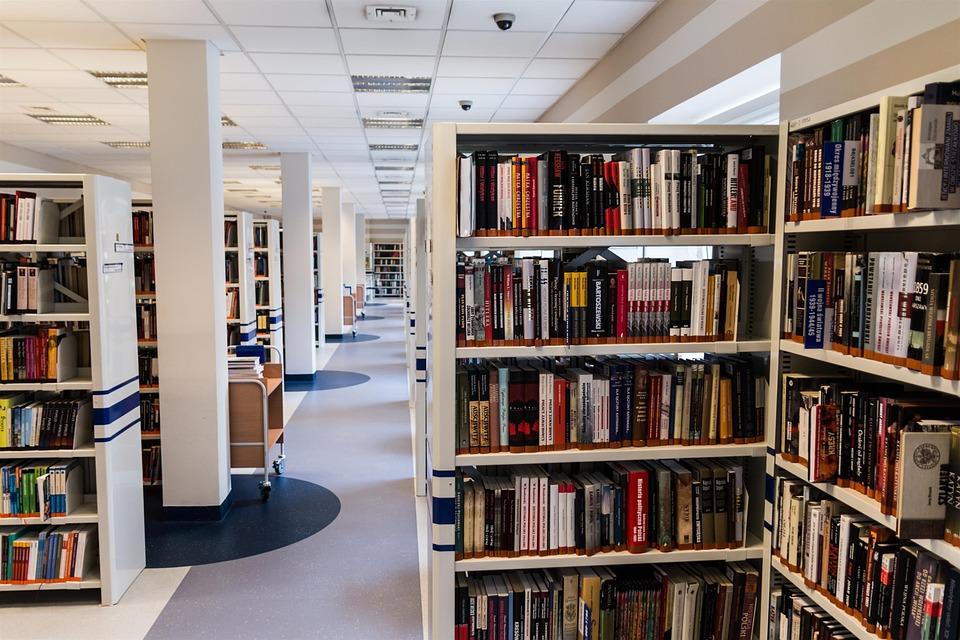 Bibliotheken Dissertation