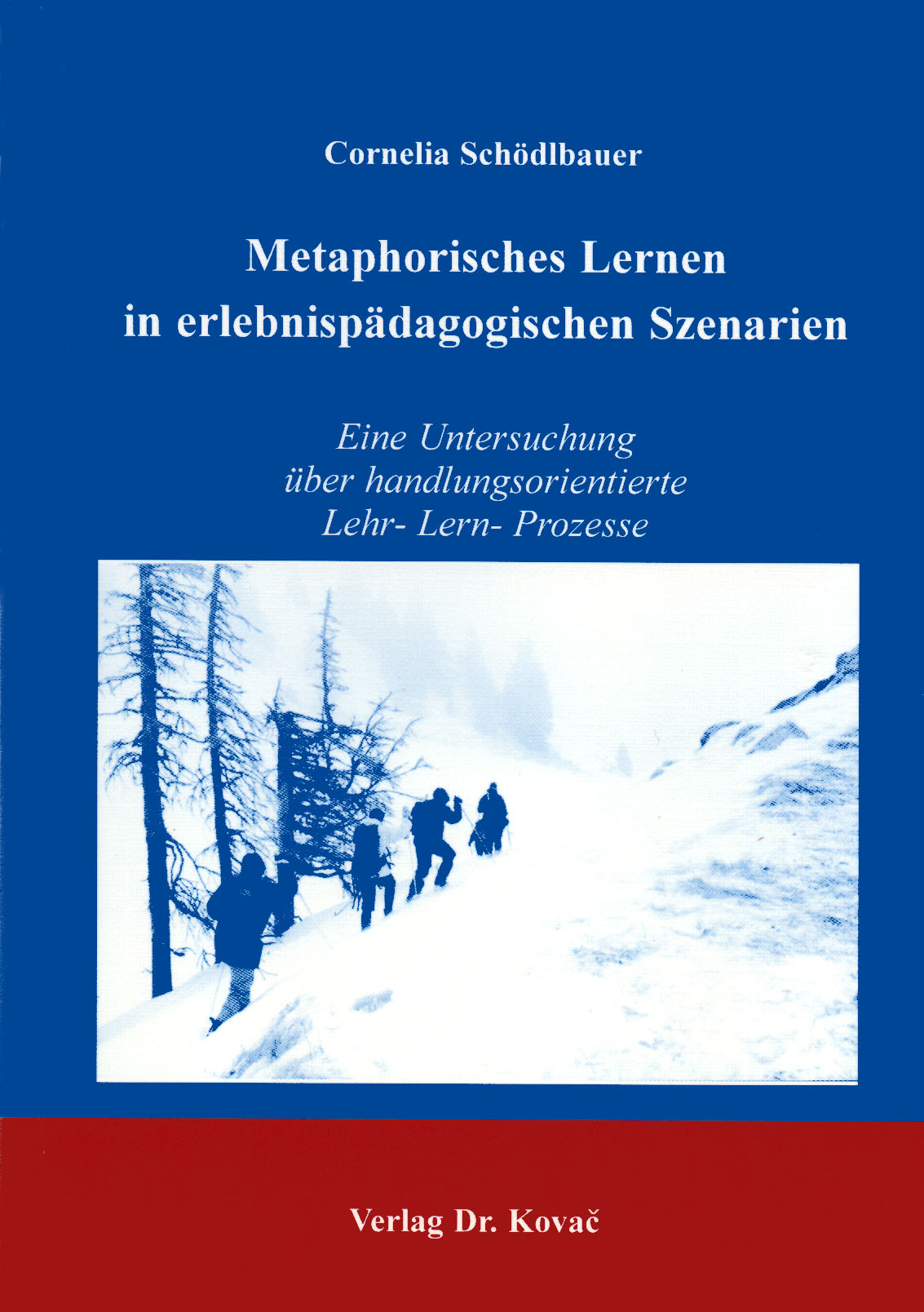 Cover: Metaphorisches Lernen in erlebnispädagogischen Szenarien
