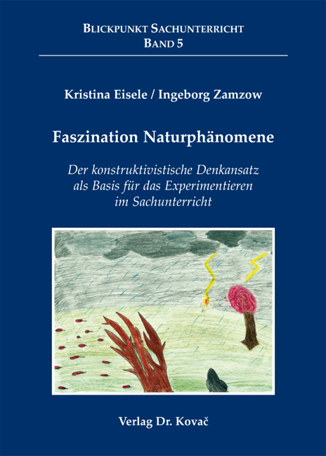 Cover: Faszination Naturphänomene