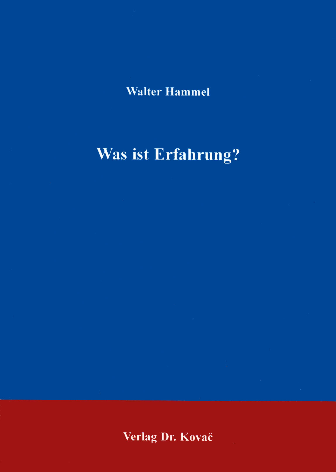 Cover: Was ist Erfahrung?